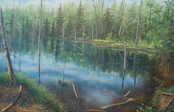 Swamp in Summer